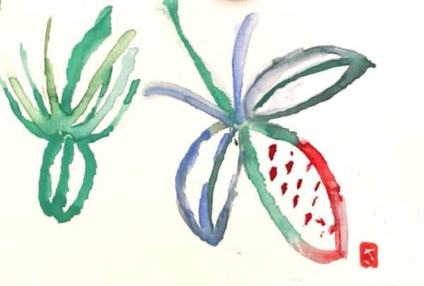 カラフルに描かれた草花