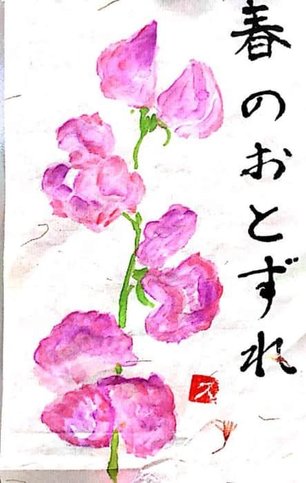 春のおとずれを告げるピンクのスイートピー