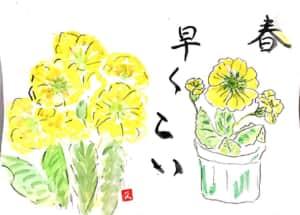 春、はやくこい 〜黄色いプリムラジュリアン〜