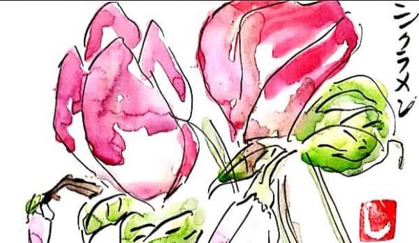お花をいっぱい描いた日〜シクラメン〜