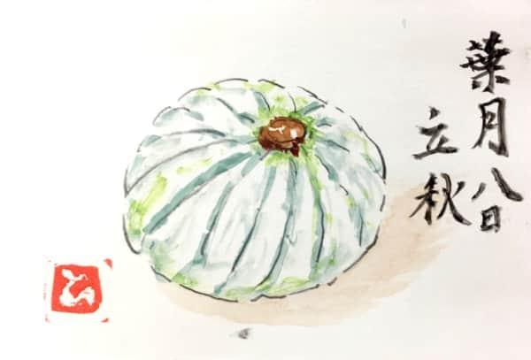 葉月八日 立秋のかぼちゃ