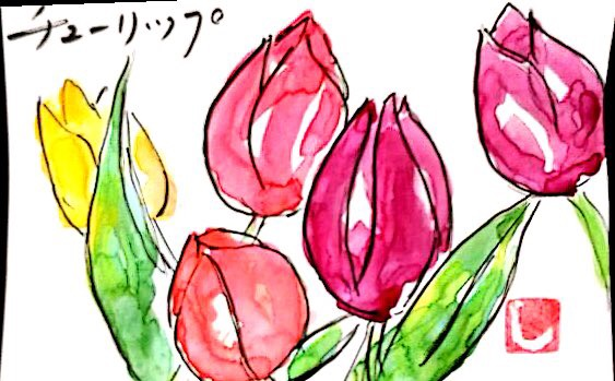 赤と黄色のチューリップの花