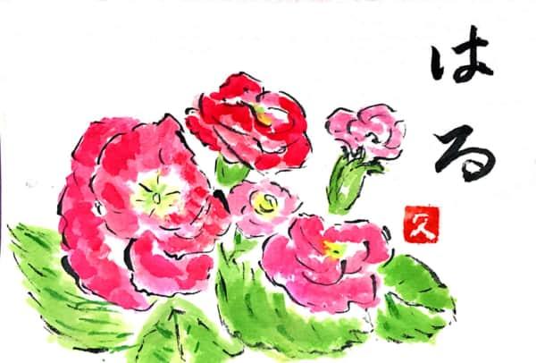 春の花 赤いパンジー