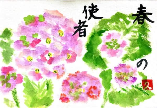 春の使者、ピンクの桜草の花