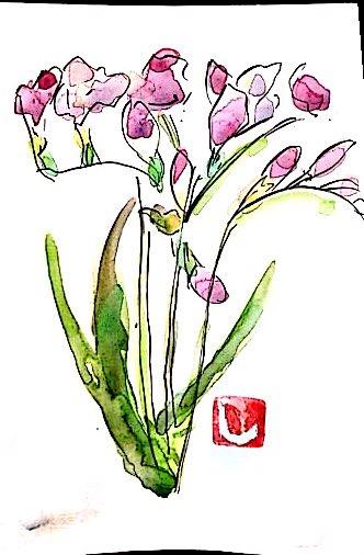 春を感じる紫の花