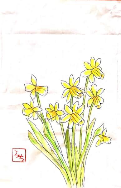 黄色い水仙の花の絵手紙