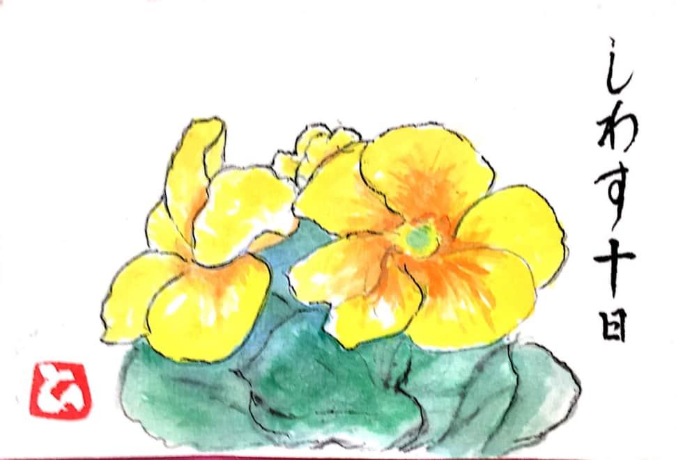 黄色いパンジーの花