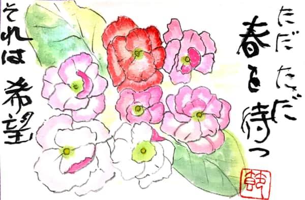 ただただ春を待つ それは希望 〜パンジーの花〜