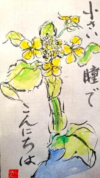 瞳でこんにちは 〜菜の花〜