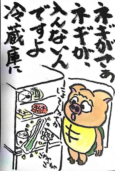 ネギがさぁ、ネギが入らないんですよ冷蔵庫に