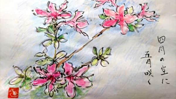 四月に咲く五月の花 〜サツキ〜