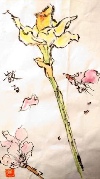 散る桜と黄水仙の花