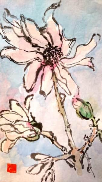 空をつかむような四手辛夷の花