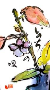 いのちの唄 花の絵手紙
