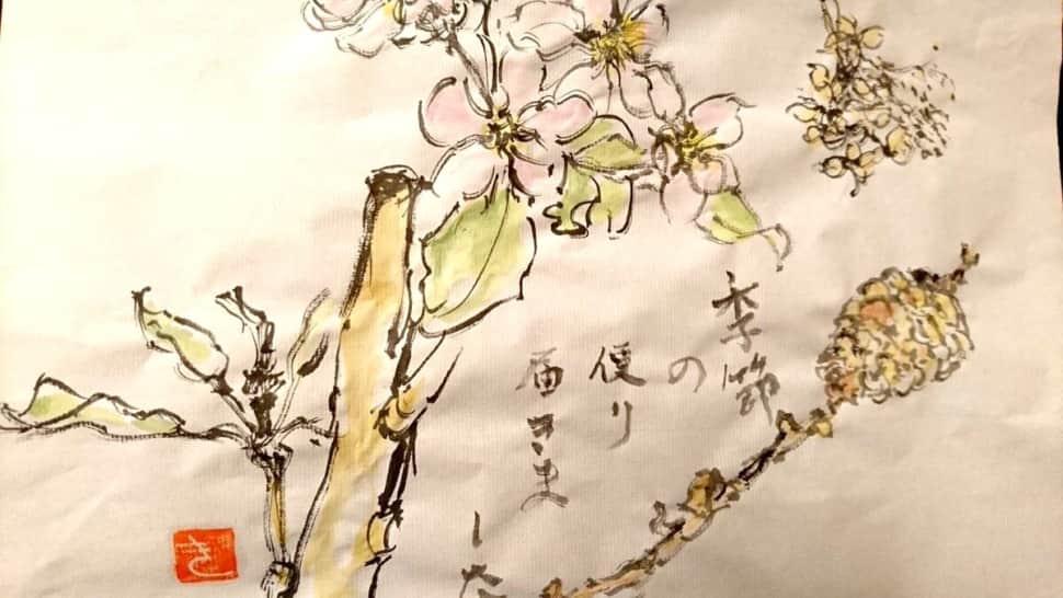 季節の便り 届きました 〜林檎の花と松ぼっくり〜