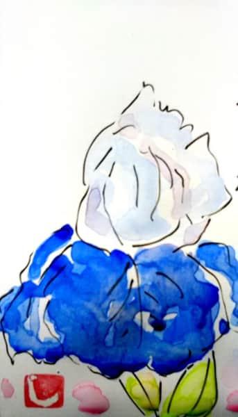 青いジャーマンアイリスの花