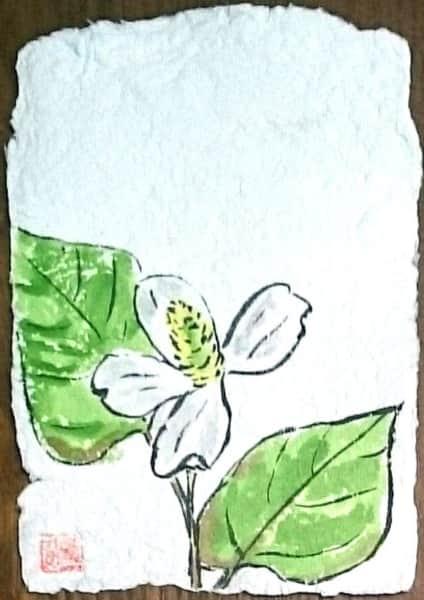 どくだみの花の牛乳パック絵手紙