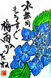 水無月 もうすぐ梅雨入りだね 〜紫陽花の花〜