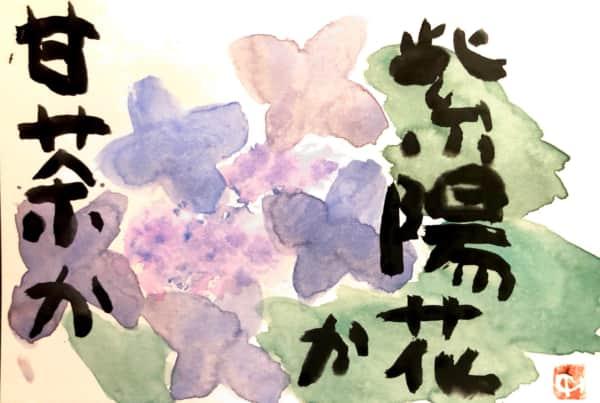 甘茶か紫陽花か