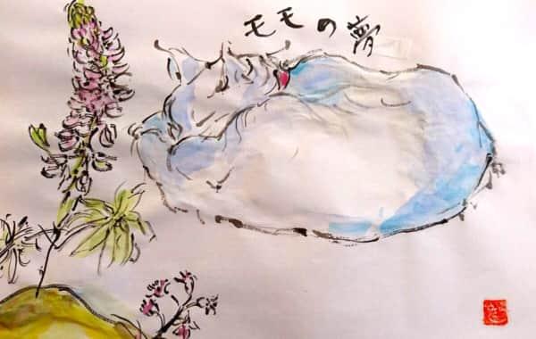 モモの夢 〜眠る猫〜