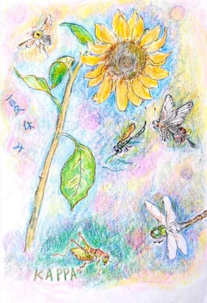 夏休みの思い出 〜ひまわり、蝶、蜂、とんぼ、きりぎりす〜