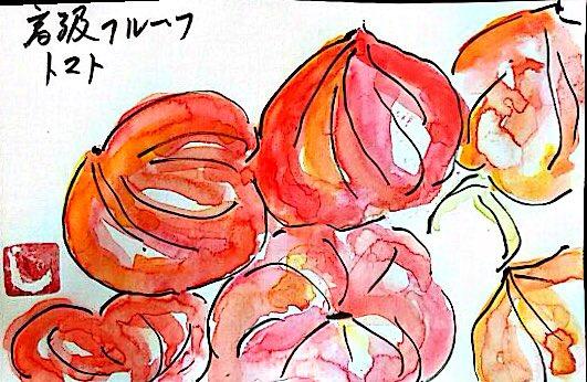 高級フルーツトマト