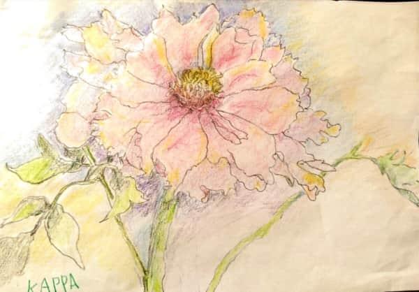 春に咲く桃の花