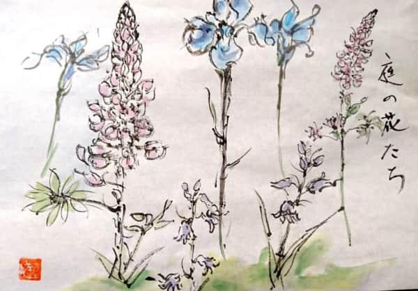 庭の花たち 〜花菖蒲、昇り藤、釣鐘水仙〜