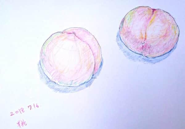 七月の桃の実