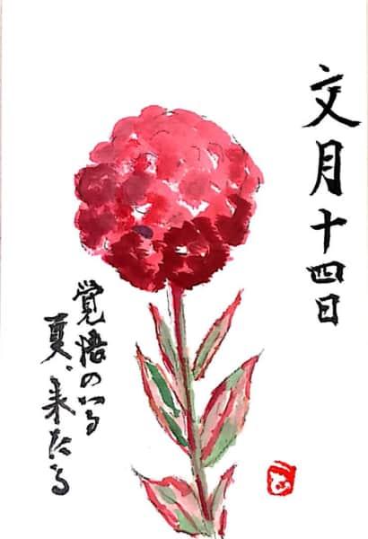 文月十四日 覚悟のいる夏、来たる 〜ダリアの花〜