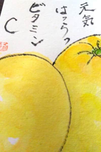元気はつらつビタミンC 〜グレープフルーツ〜