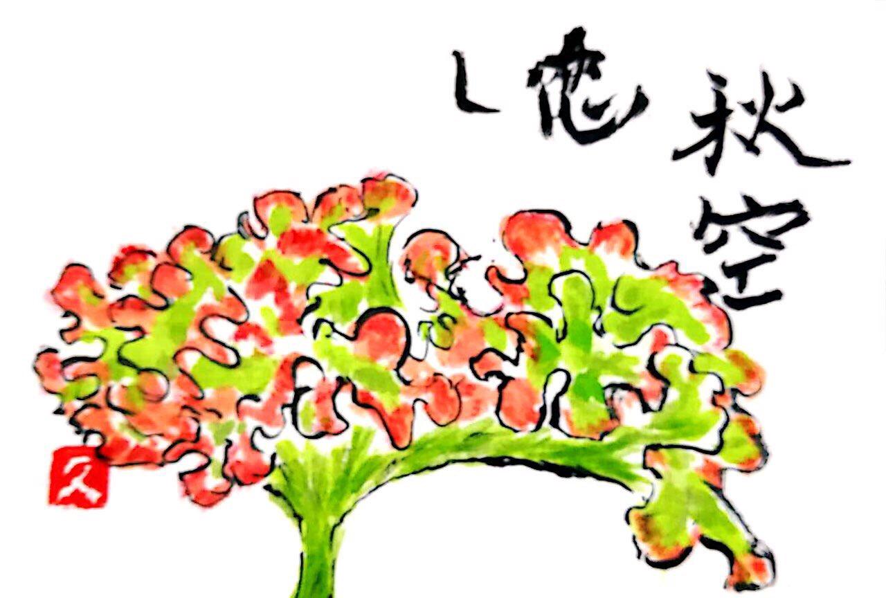 秋空恋し 鶏頭の花