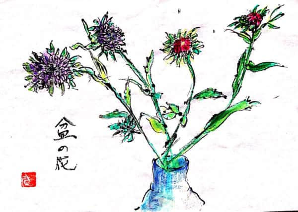 盆の花 〜花瓶に挿したアスター(エゾギク)〜