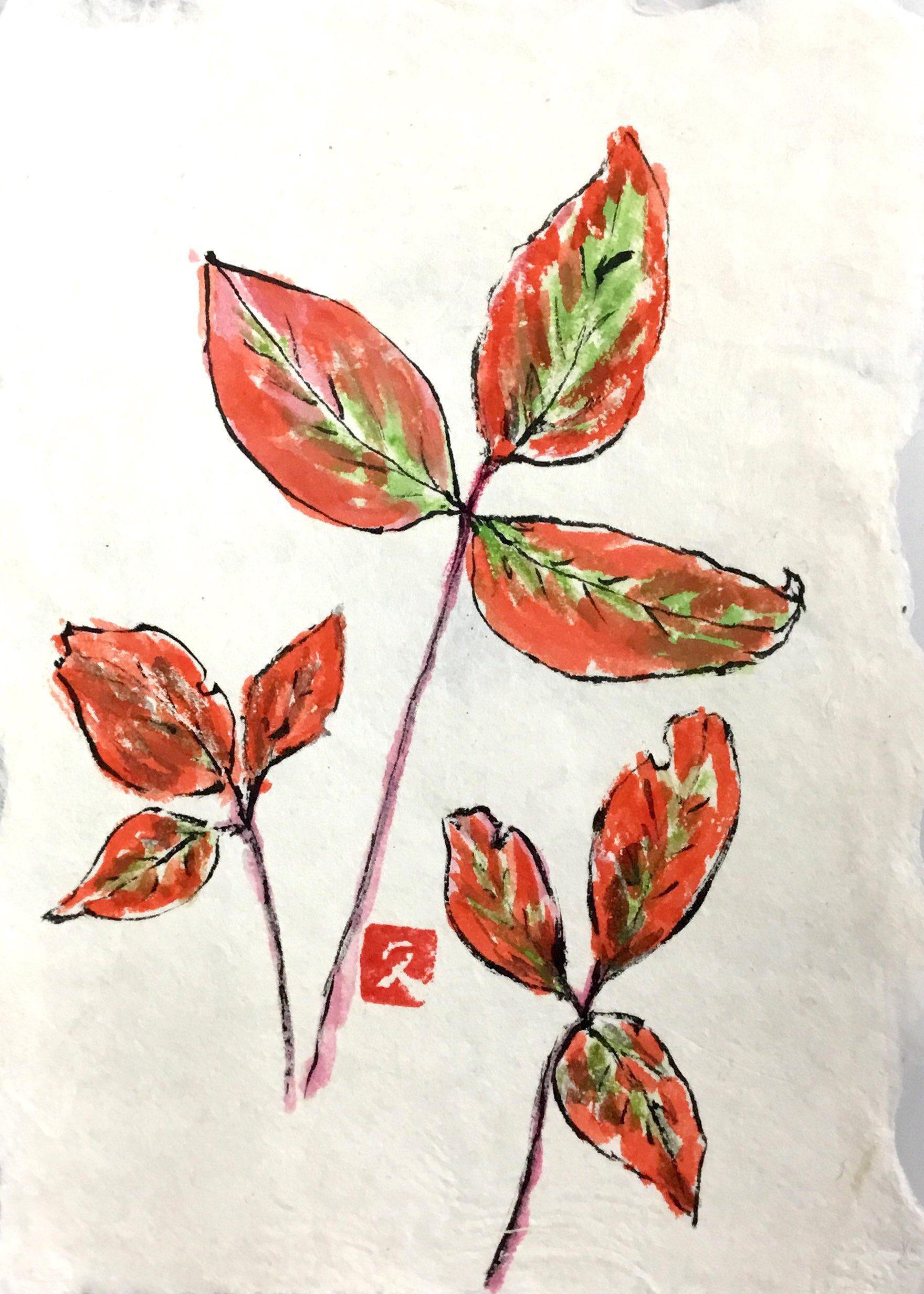 秋の紅葉した落ち葉