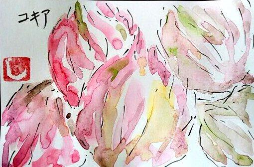 コキア(ホウキギ)の花