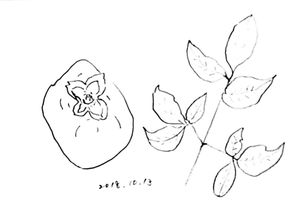 柿の実と秋の枯葉