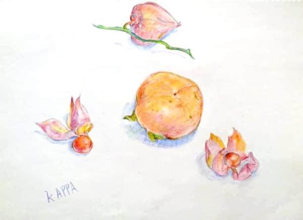 秋の夜長に、ほおずきと柿の実