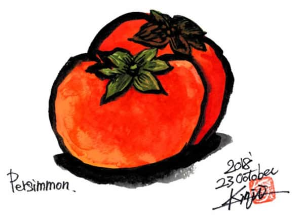 二つ並んだ柿の実