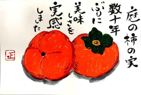 庭の柿の実 数十年ぶりに美味しさを実感しました