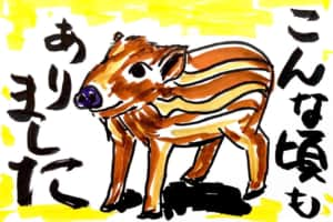 猪うり坊の絵手紙年賀状