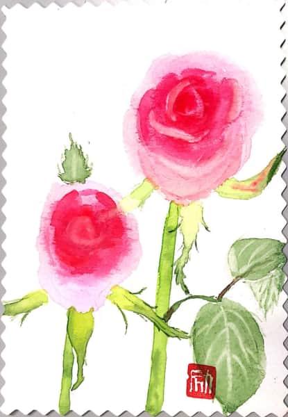 仲良く並んだピンクのバラの花