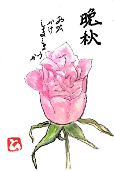 晩秋 お出かけしましょうか 〜ピンクのバラの花〜