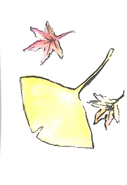イチョウと紅葉