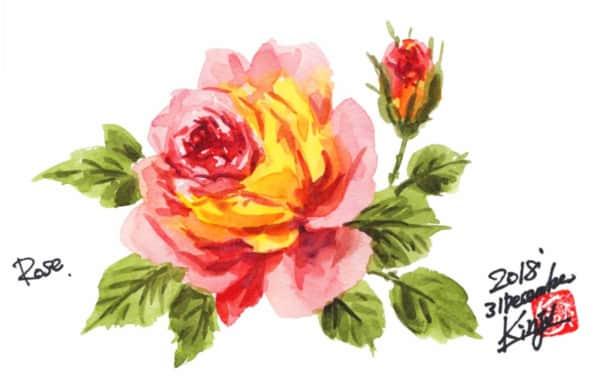 大晦日のバラの花