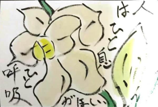 人は ひと息 ひと呼吸がほしい 〜白い水仙の花の絵手紙〜