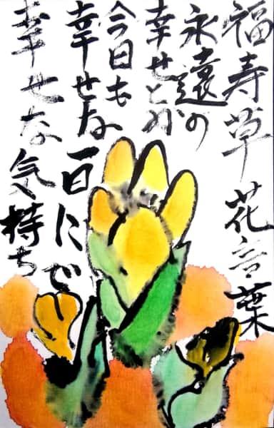 福寿草 花言葉 永遠の幸せとか 今日も幸せな一日で幸せな気持ち