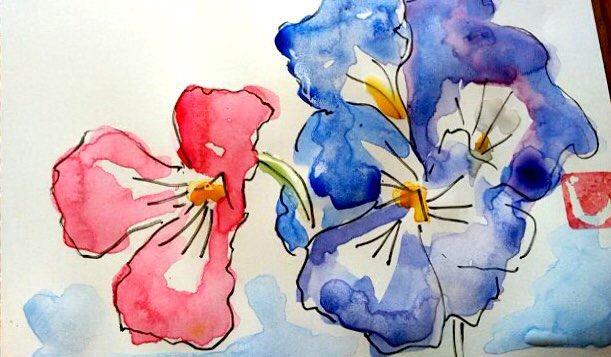 赤と青のパンジーの花