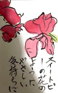 スイートピーの花のよう優しい気持ちに