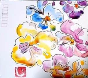色とりどりのパンジーの花