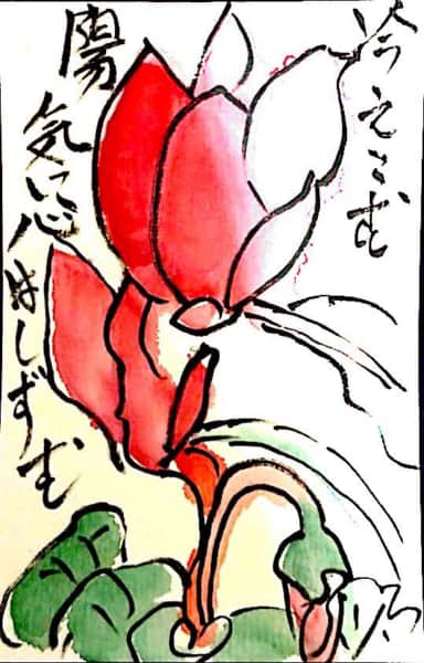 冷えこむ陽気に心はしずむ 〜赤いシクラメンの花〜